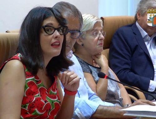 Pleno Ordinario Municipal 28/07/2017