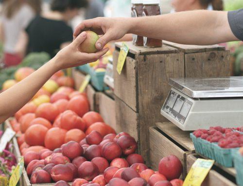 El Plan de Comercio incluye muchas de las medidas propuestas por Ganemos para mejorar el sector