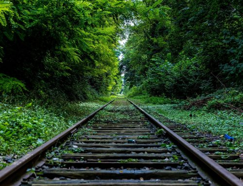 Revisión del AVE e implantación del ferrocarril convencional de la Vía de la Plata
