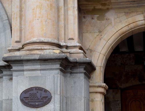 Salamanca necesita soluciones al exceso de palomas