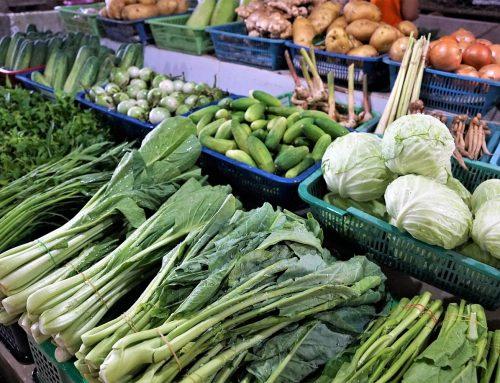 Iniciativa para dotar a Salamanca de un mercado mensual de productos ecológicos