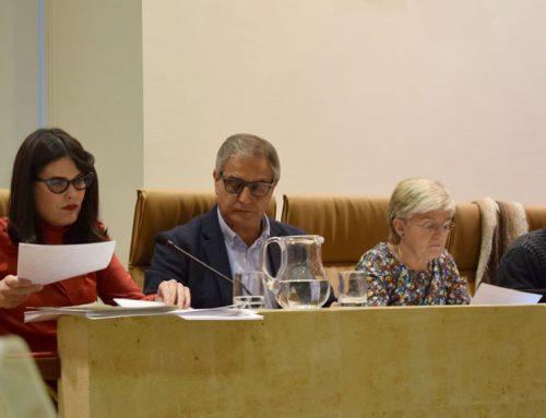 El pleno aprueba las mociones de Ganemos de apoyo a personas sin hogar y dinamización del mercado de San Justo