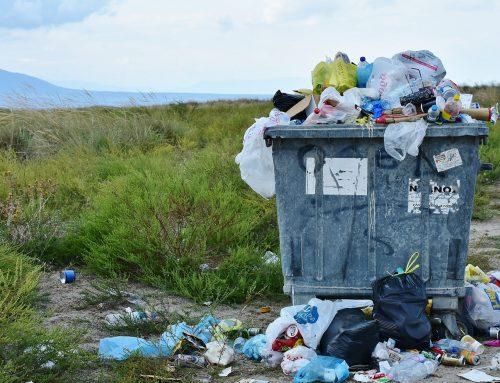 Propuesta para crear nuevos empleos locales en la industria del reciclaje de Salamanca