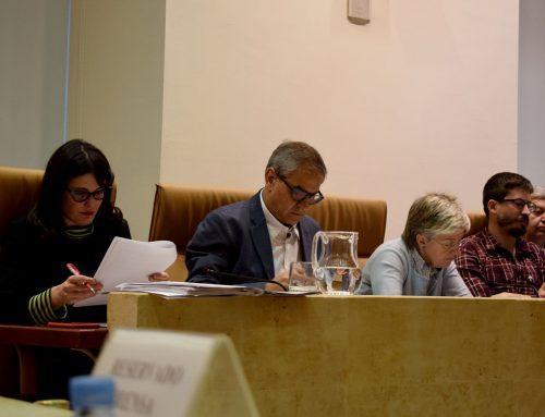 Pleno 2/2019: Garrido, el barrio elegido para poner en marcha el programa 'Creando futuro' a iniciativa de Ganemos